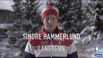 Sindre Hammerlund – portrett
